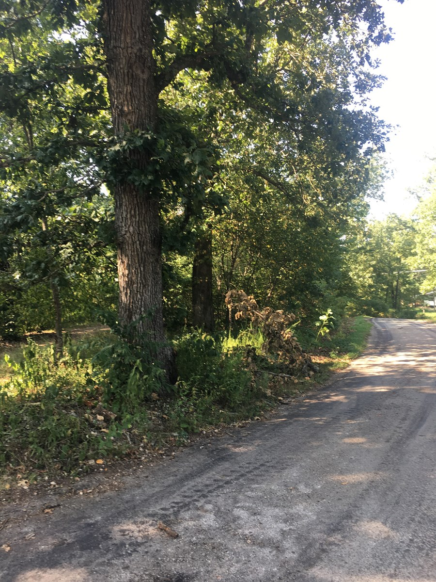 RECREATIONAL LOTS FOR SALE ELLINGTON MO