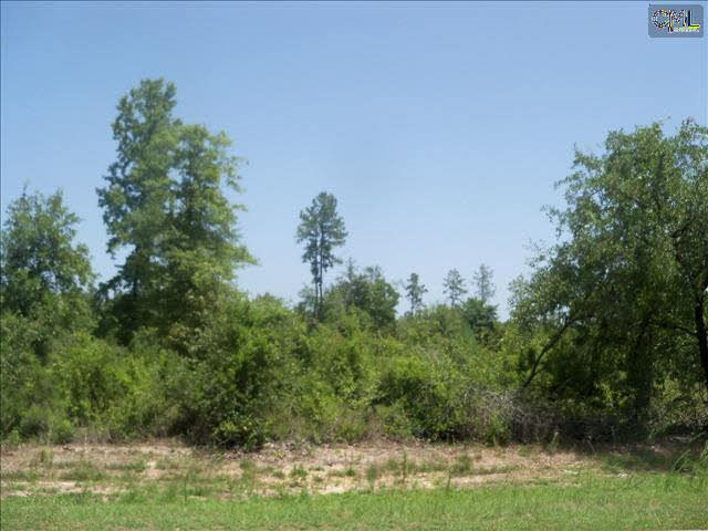 Build Your Dream Home on 3 Acres Near Historic Camden, SC