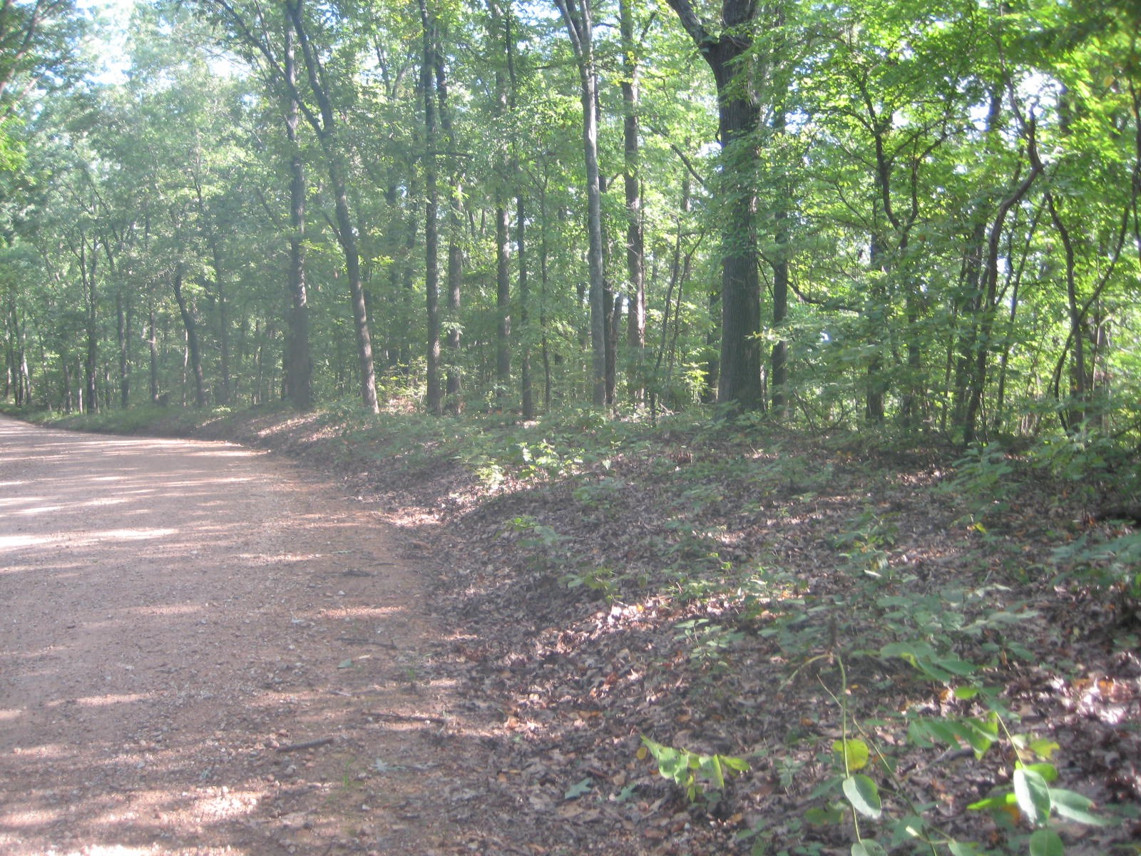 Recreational Fishing Hunting Land For Sale! 5+/- Acres!
