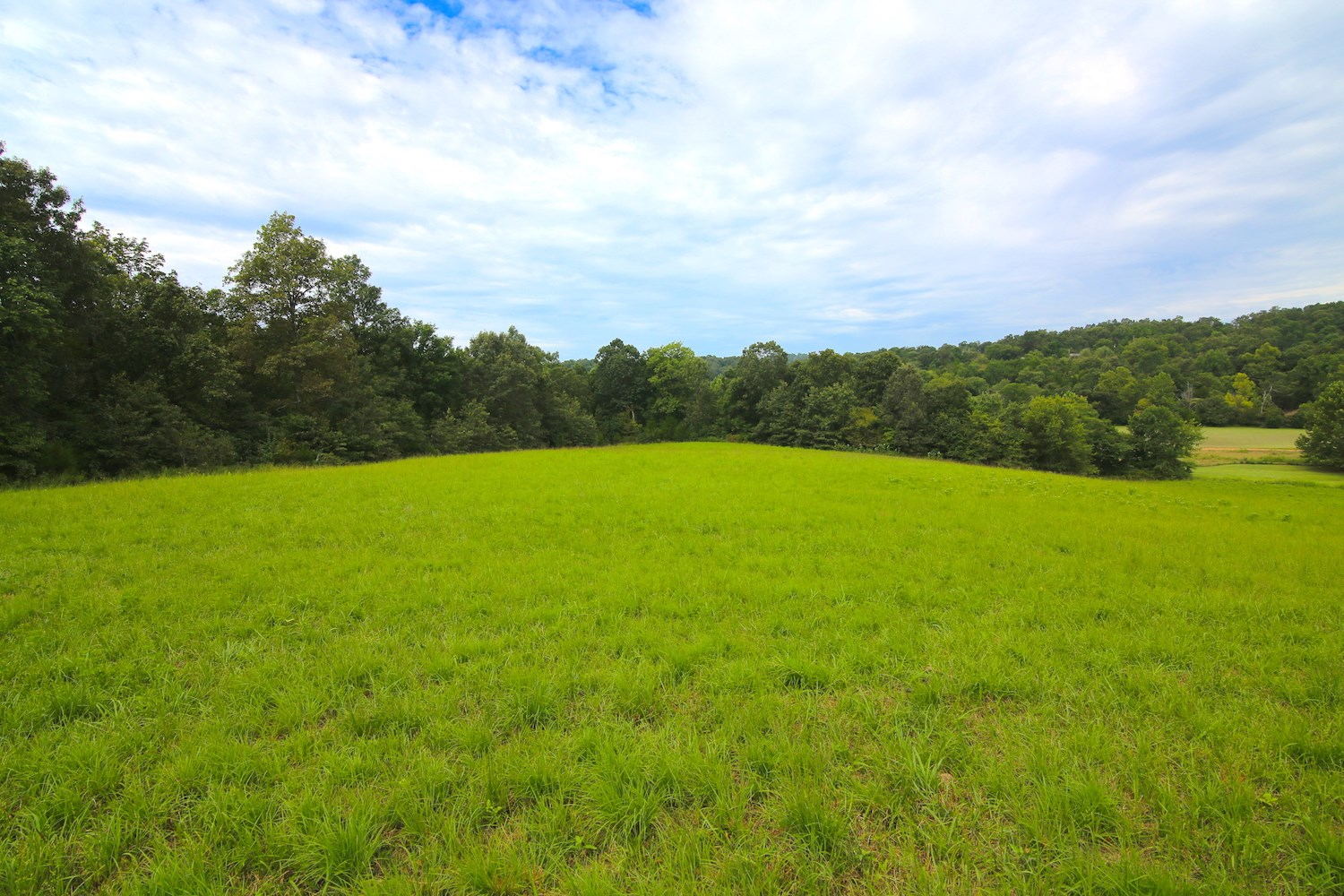 Land for Sale w/ Creek Frontage & Spring River Access in AR