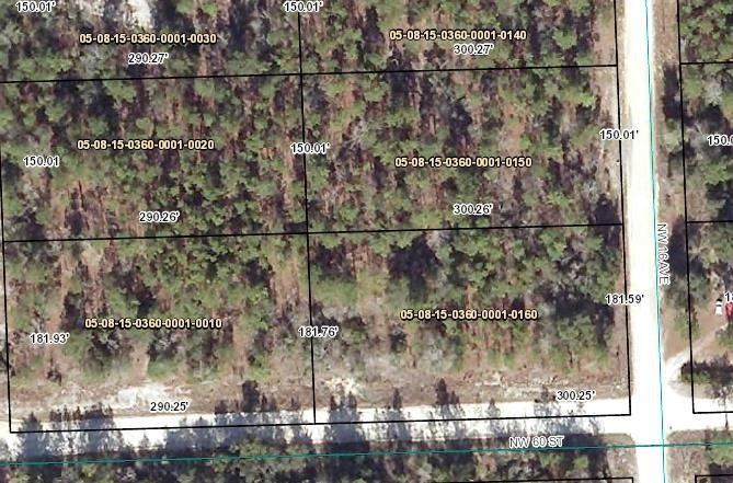 GILCHRIST COUNTY VACANT LAND - Bell, Florida