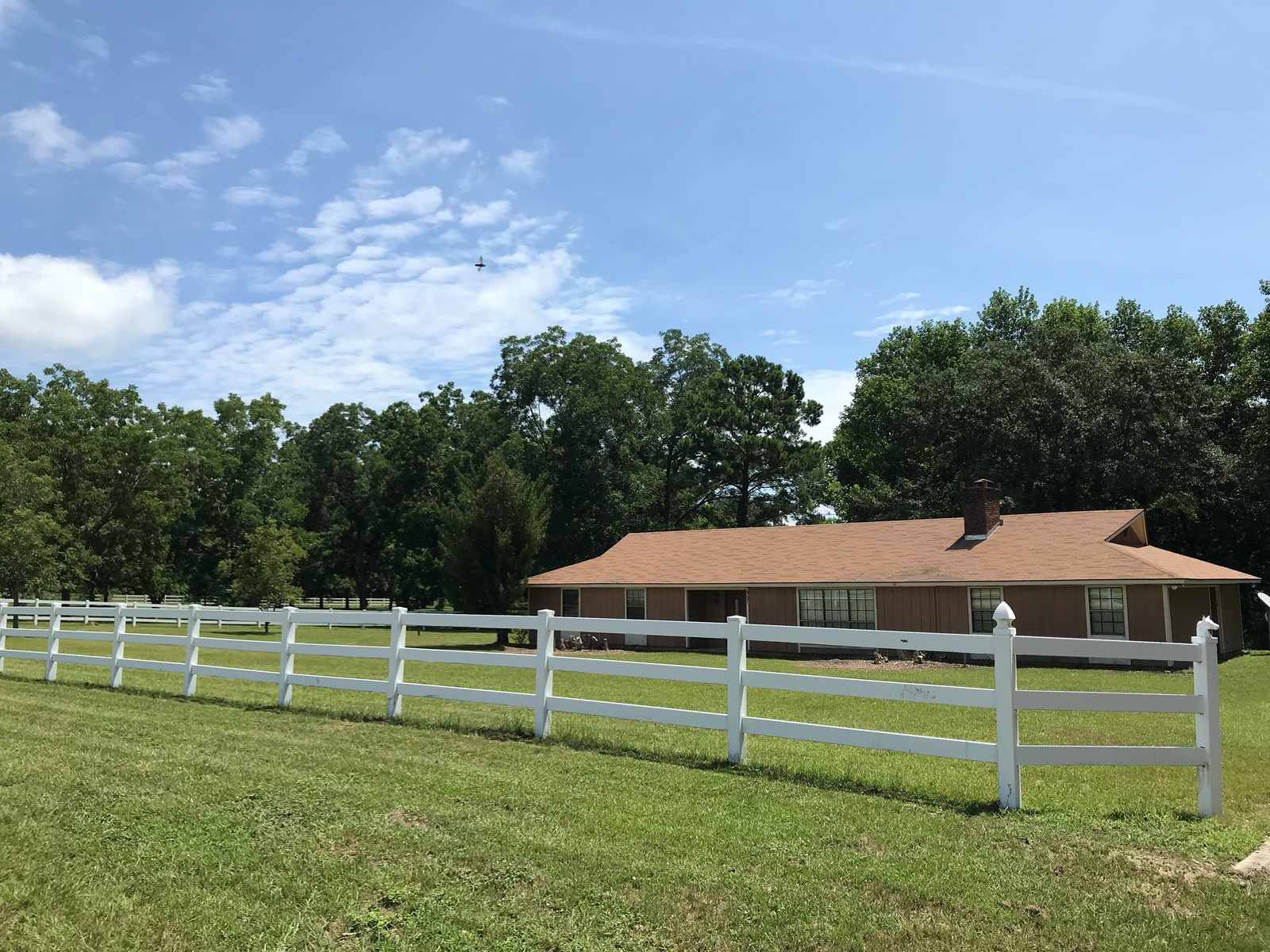 COUNTRY HOME 3B/3B ON 7.6 ACRES FENCED SAMSON, ALABAMA