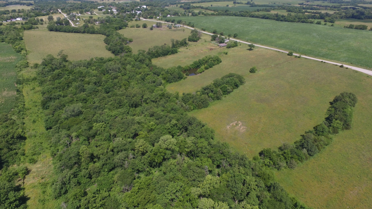 For Sale 69 acres m/l in Daviess County