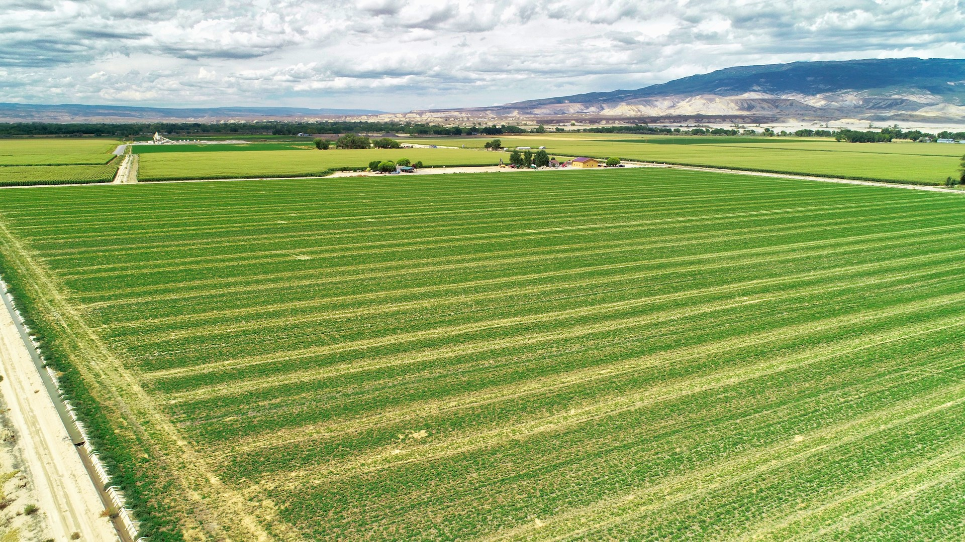 Southwest irrigated Farmland for sale-Delta, Colorado