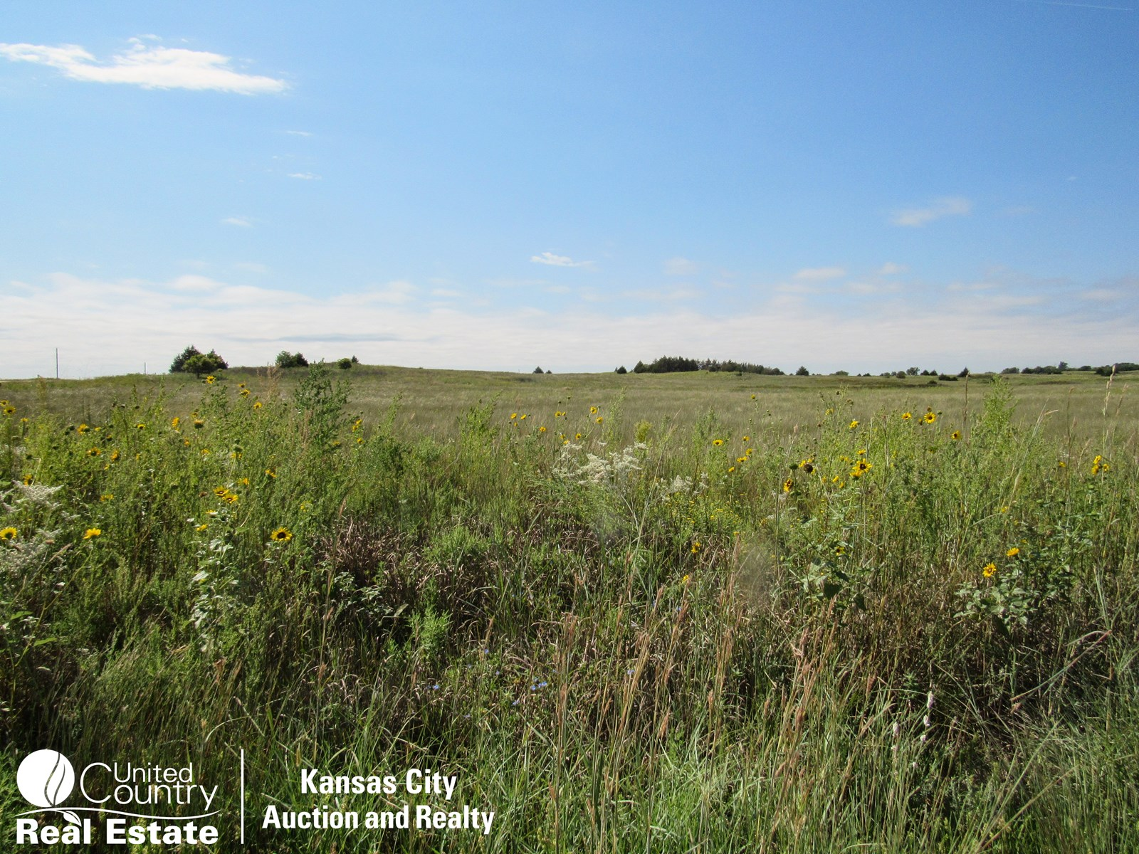 Kiowa County Kansas Land Auction