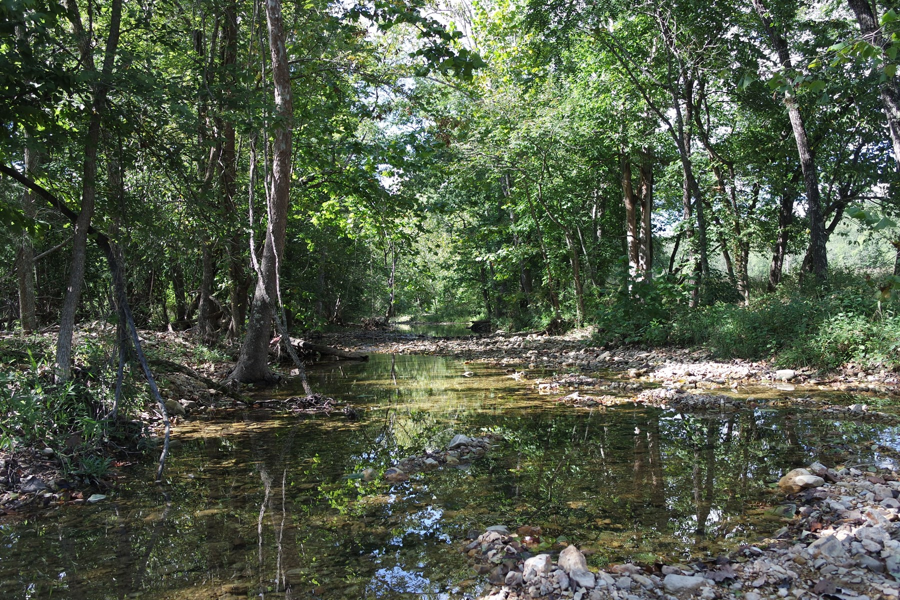 Land for Sale on South Prong of Jacks Fork River