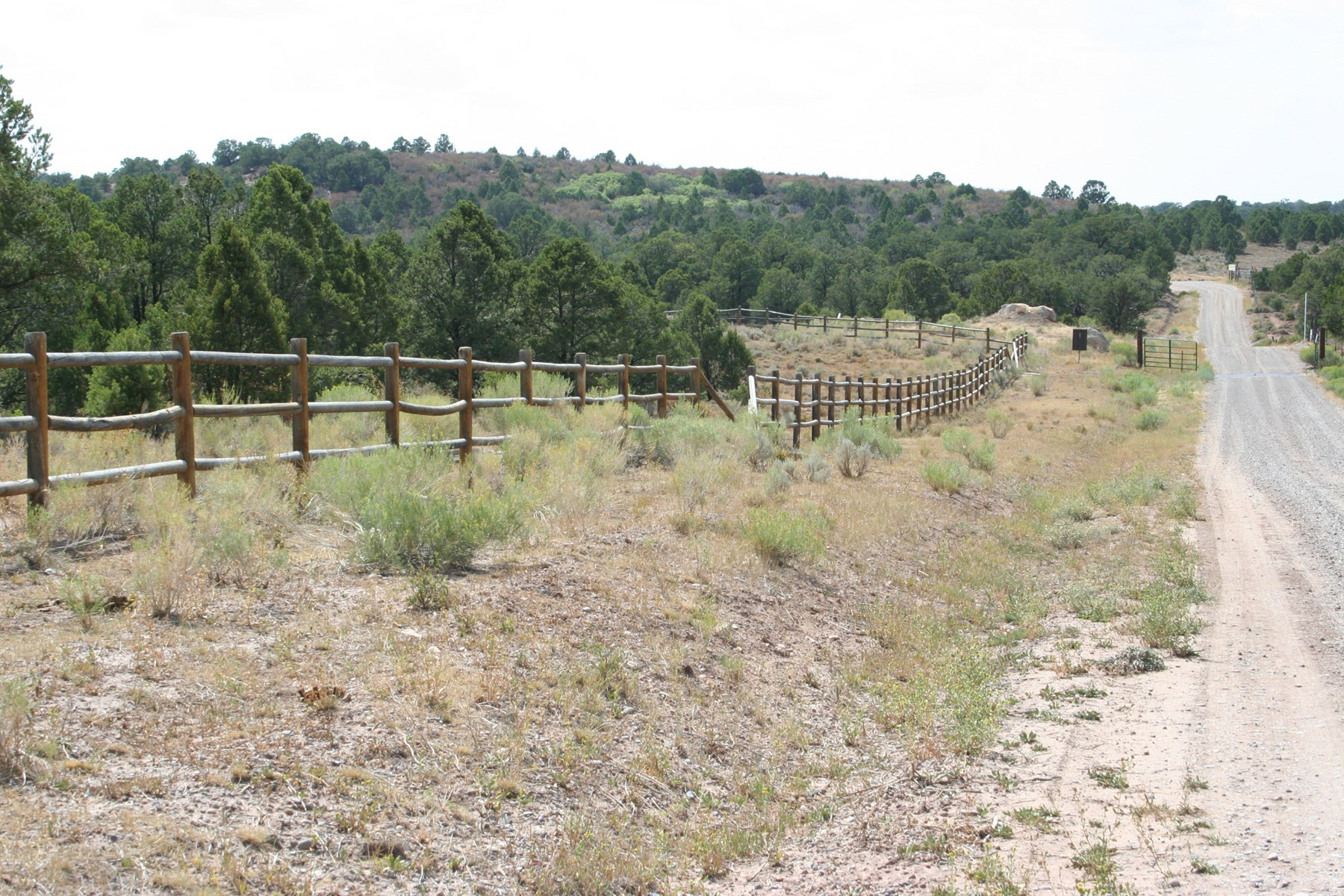 35 acre Mountain Homesite for sale near Grand Junction, CO