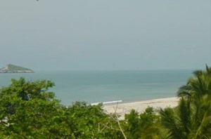 3.1 HECTARES BEACH FRONT PROPERTY FOR SALE IN SEA CLIFF