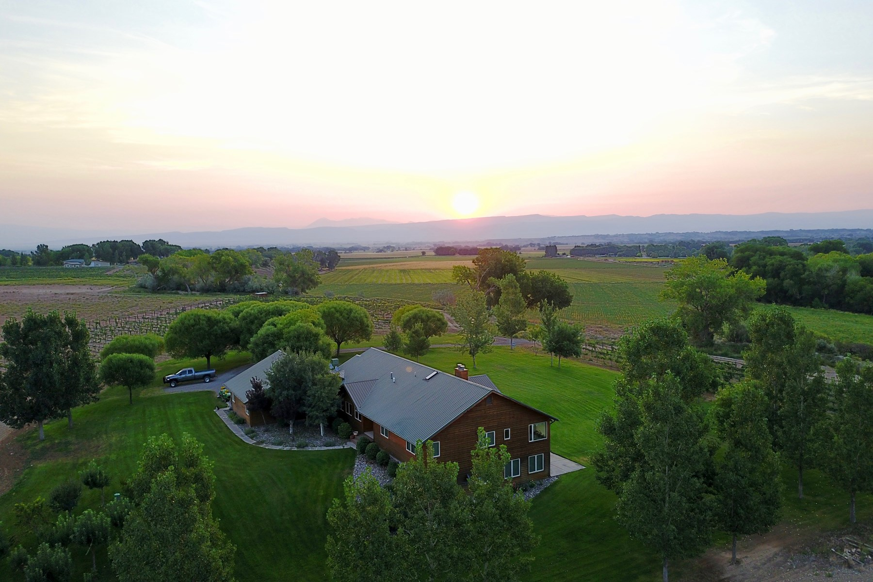 Custom Home & Vineyard on 14.4 Acres