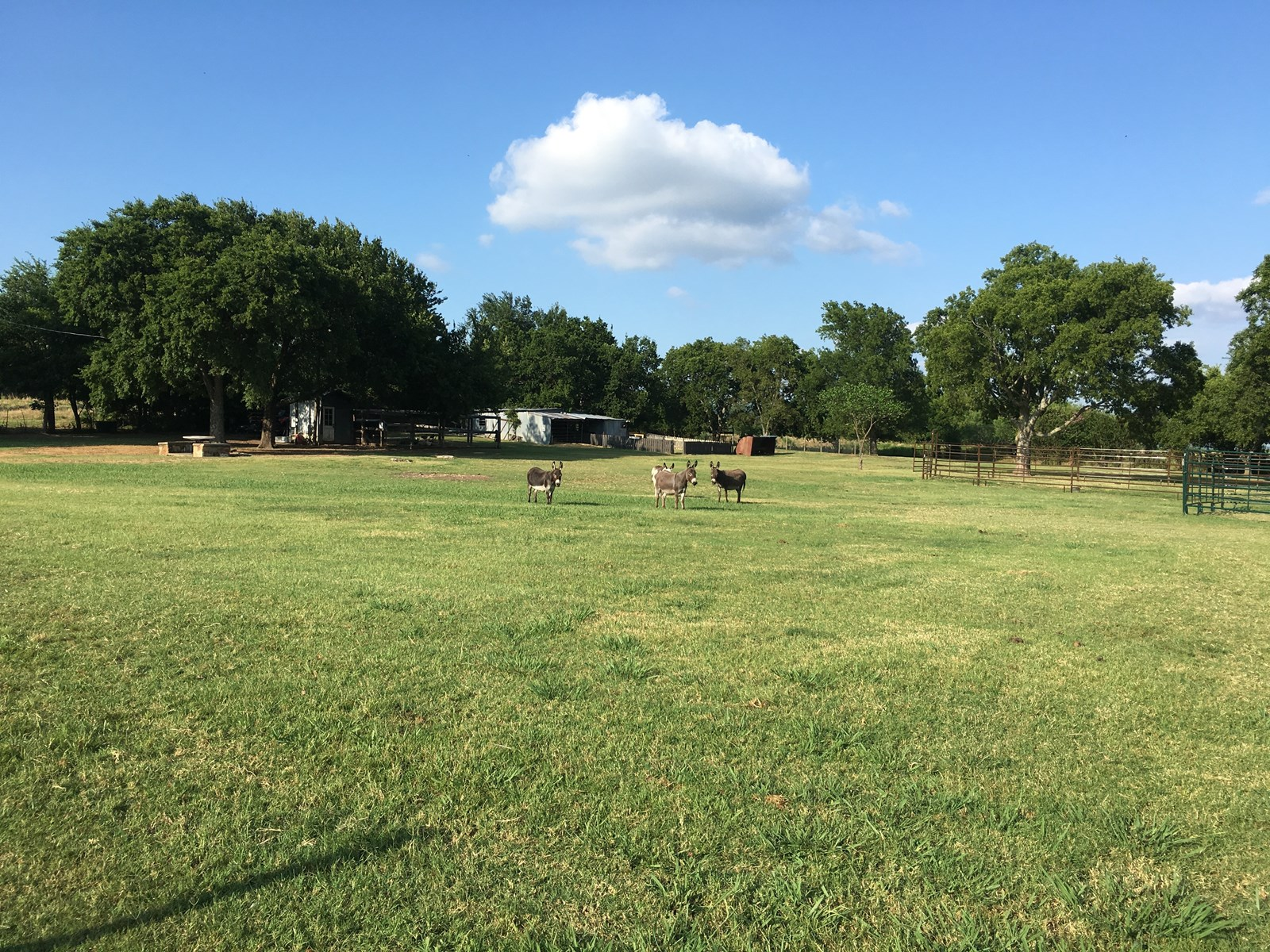 HOMES INDUSTRIAL LOT LAND HOMESITE FOR SALE ARDMORE SPRINGER CARTER COUNTY OKLAHOMA
