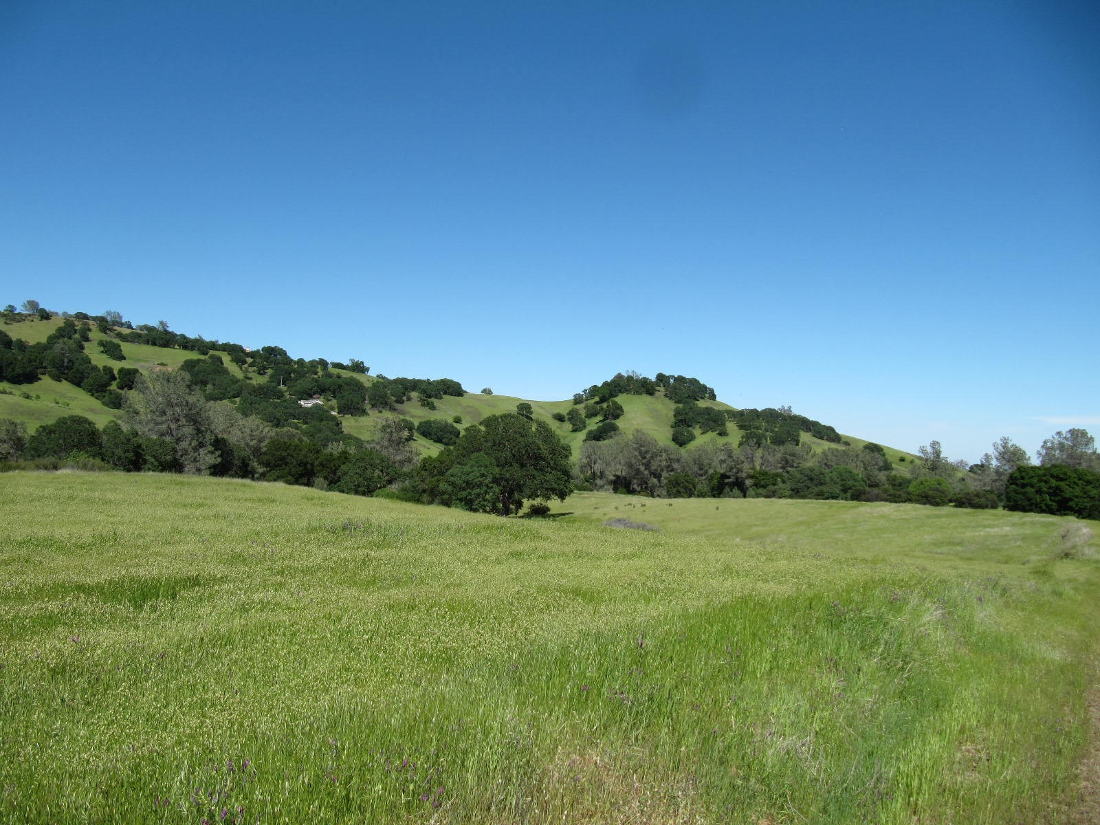 Vacaville, Solano County Acreage For Sale