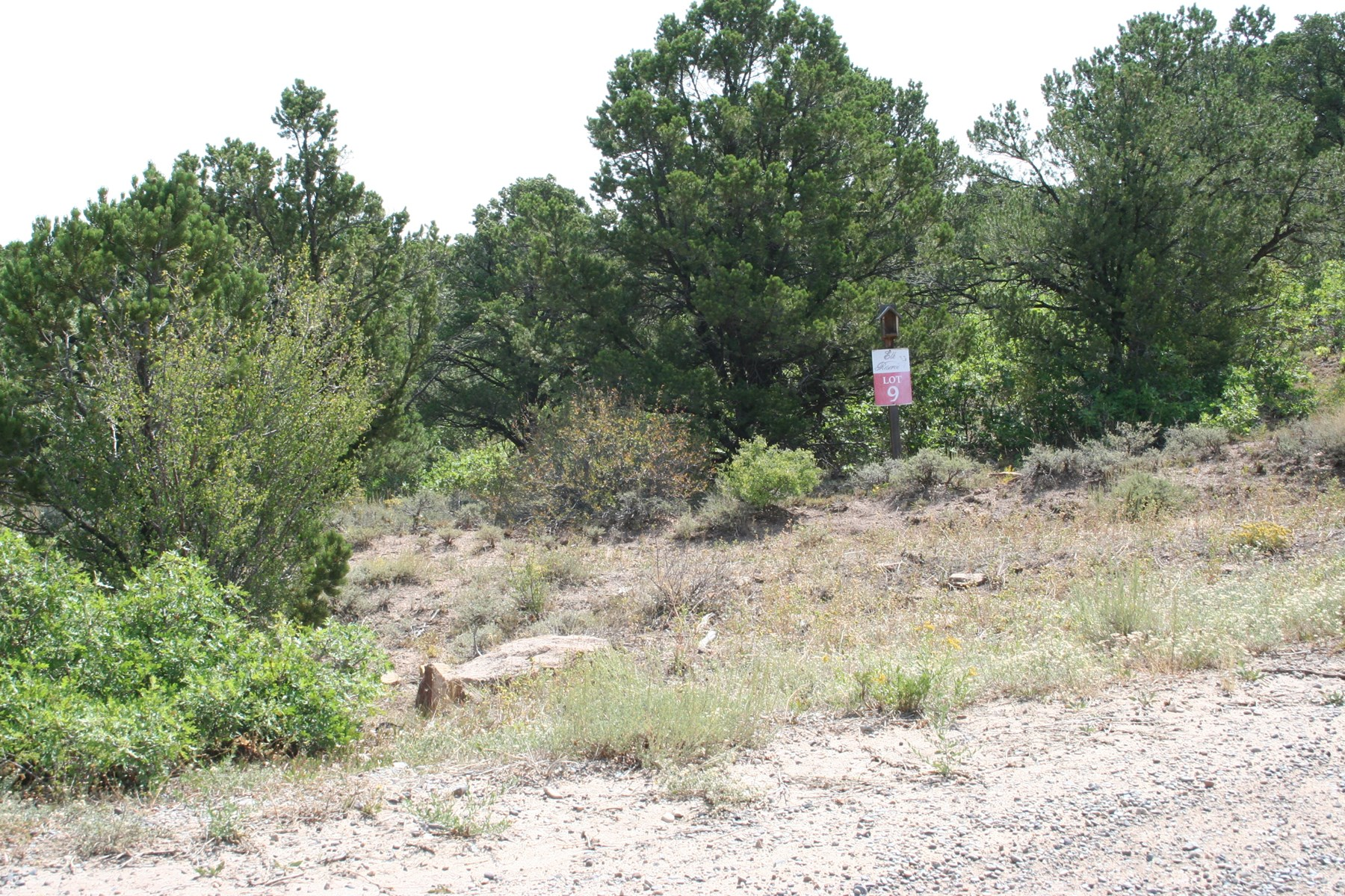 45 acre Mountain Homesite for sale near Grand Junction, CO