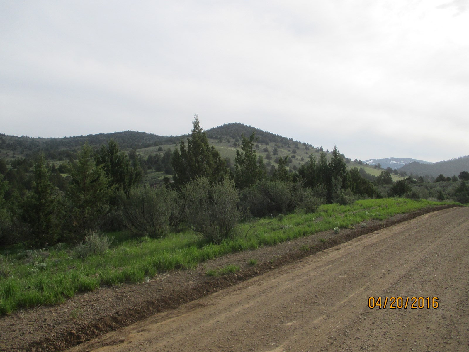 20.35 acres with Seasonal Creek