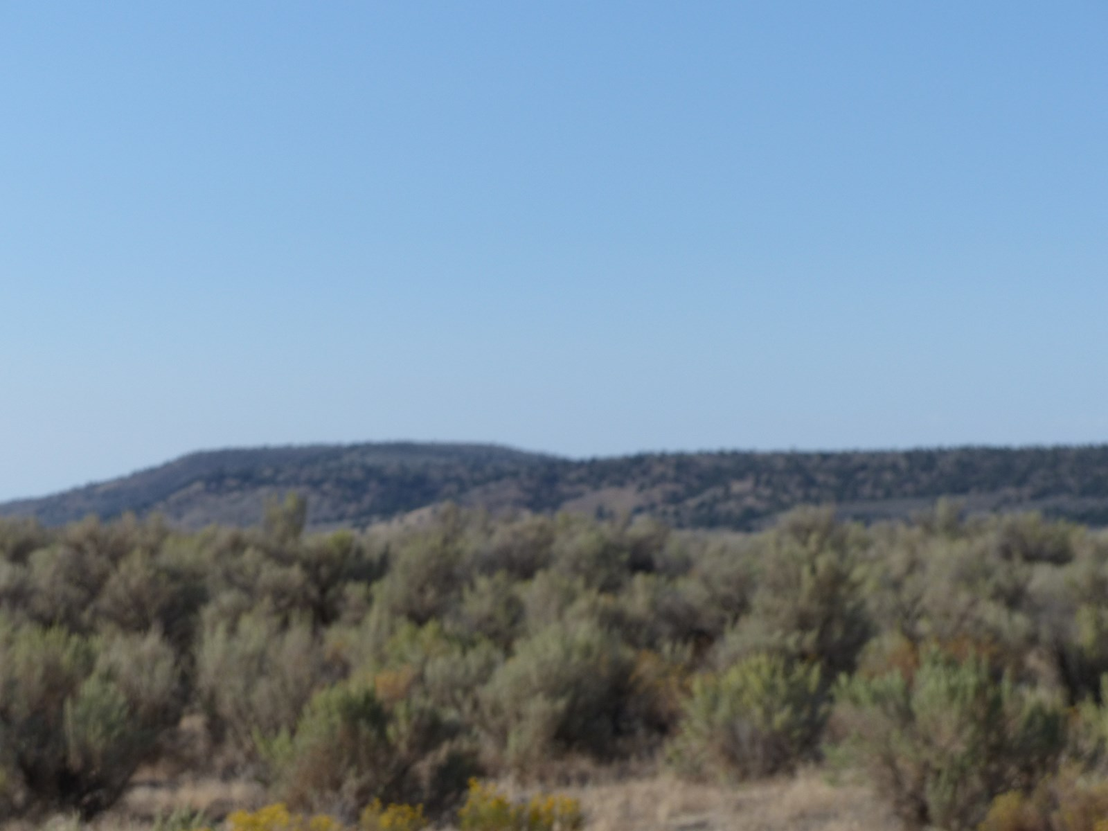 40 ACRES IN SUNSET VALLEY SOUTH OF BURNS OR