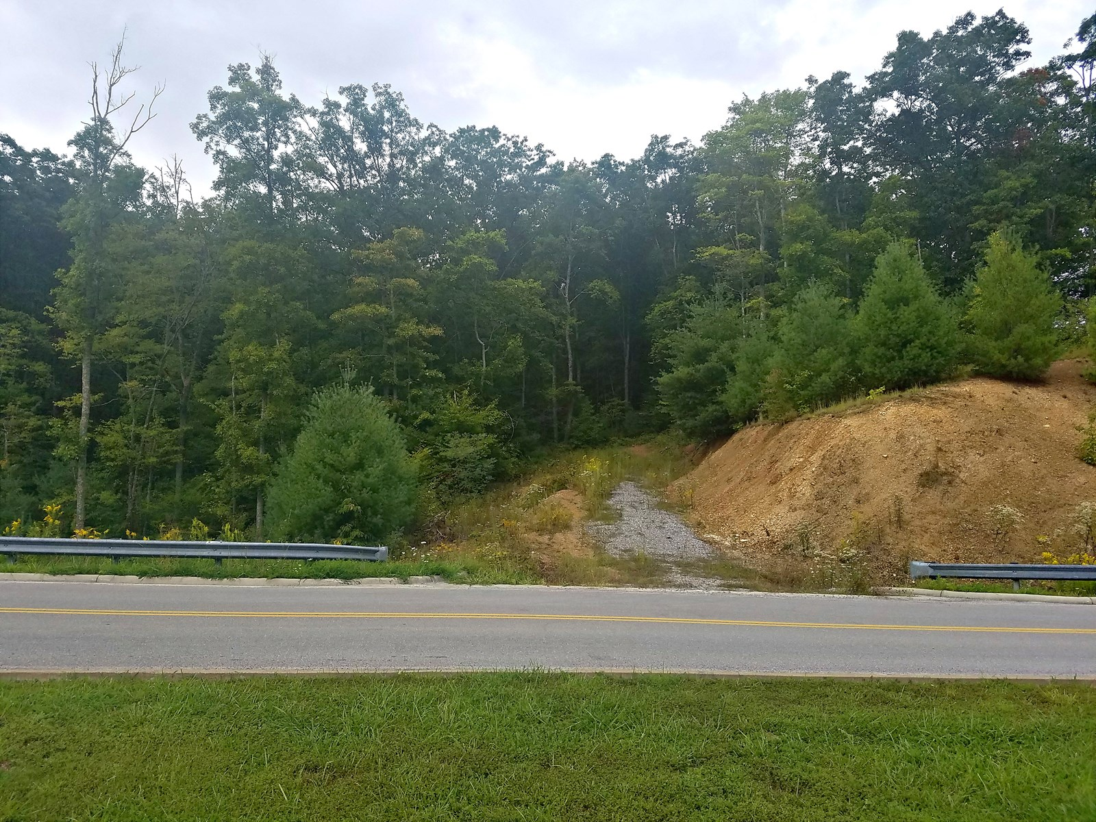 Absolute Auction - 43.34 Acres on Medical Park Dr, Bluefield