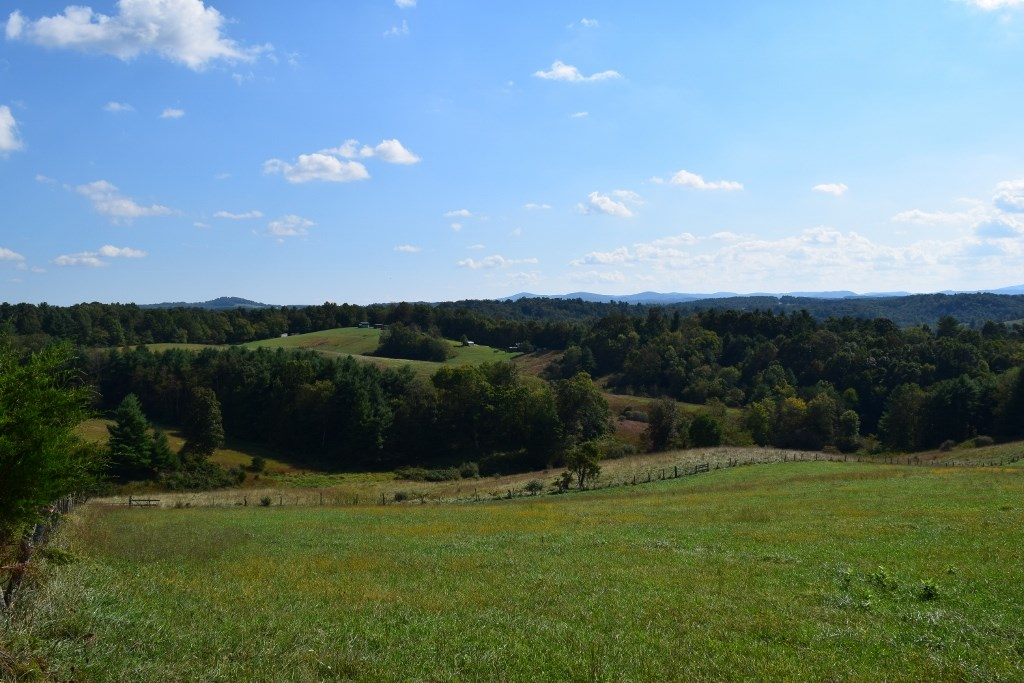 Farm Land for Sale at Auction in Floyd VA