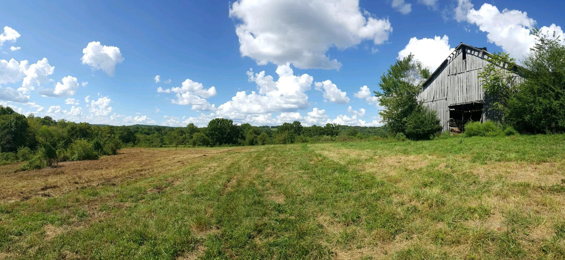 162 Acres to be Auctioned
