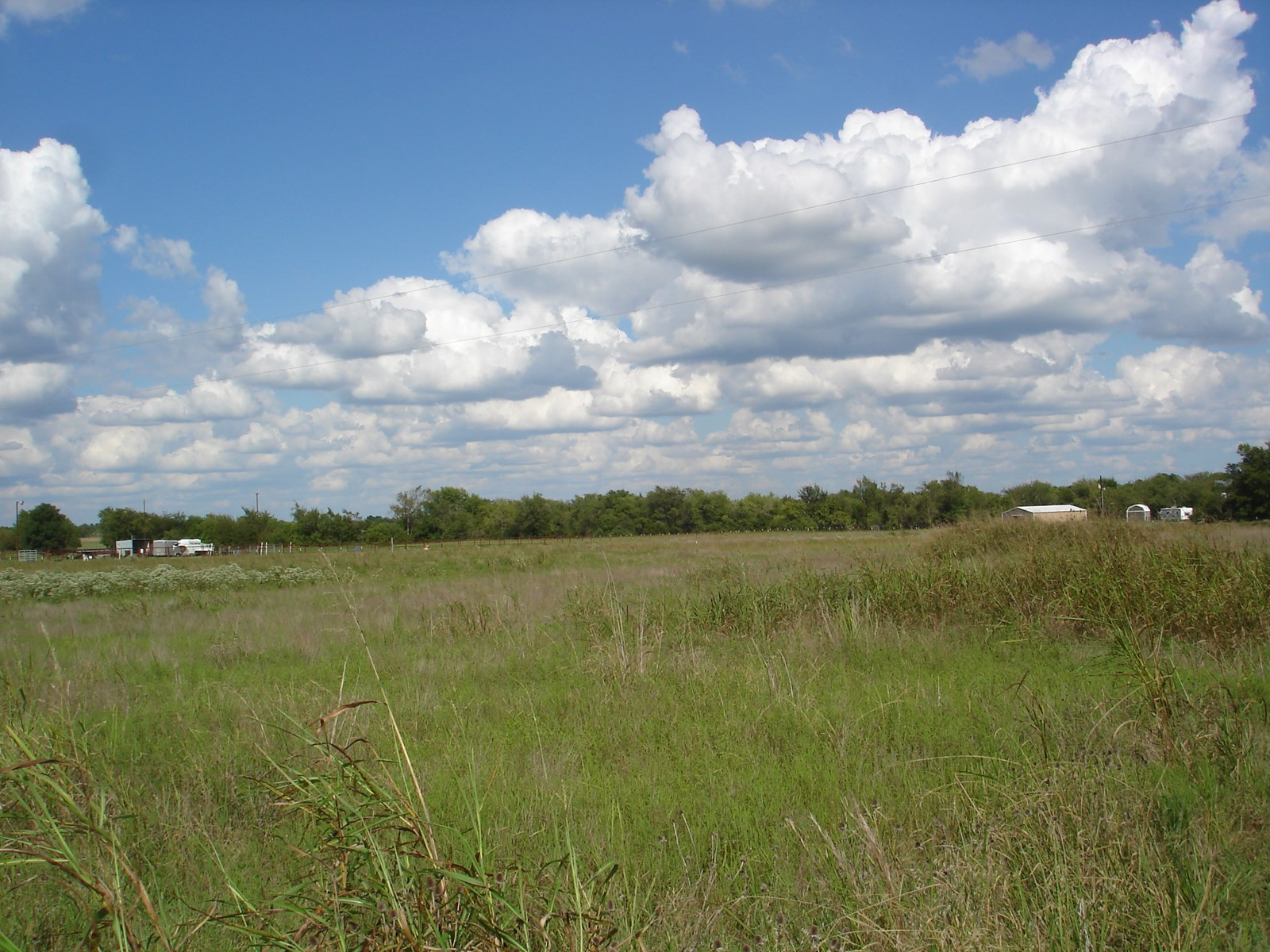 Perfect Country Acreage For Homesite in Sumner Texas