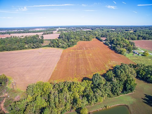 Development Land For Sale - Medina, TN - South Gibson County