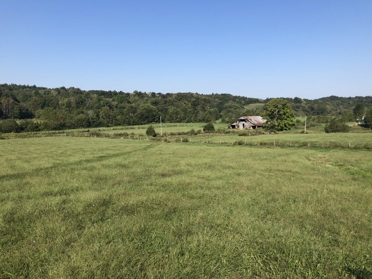 Farm, Hunting, Pond, Barn, Metcalfe County, Edmonton, KY