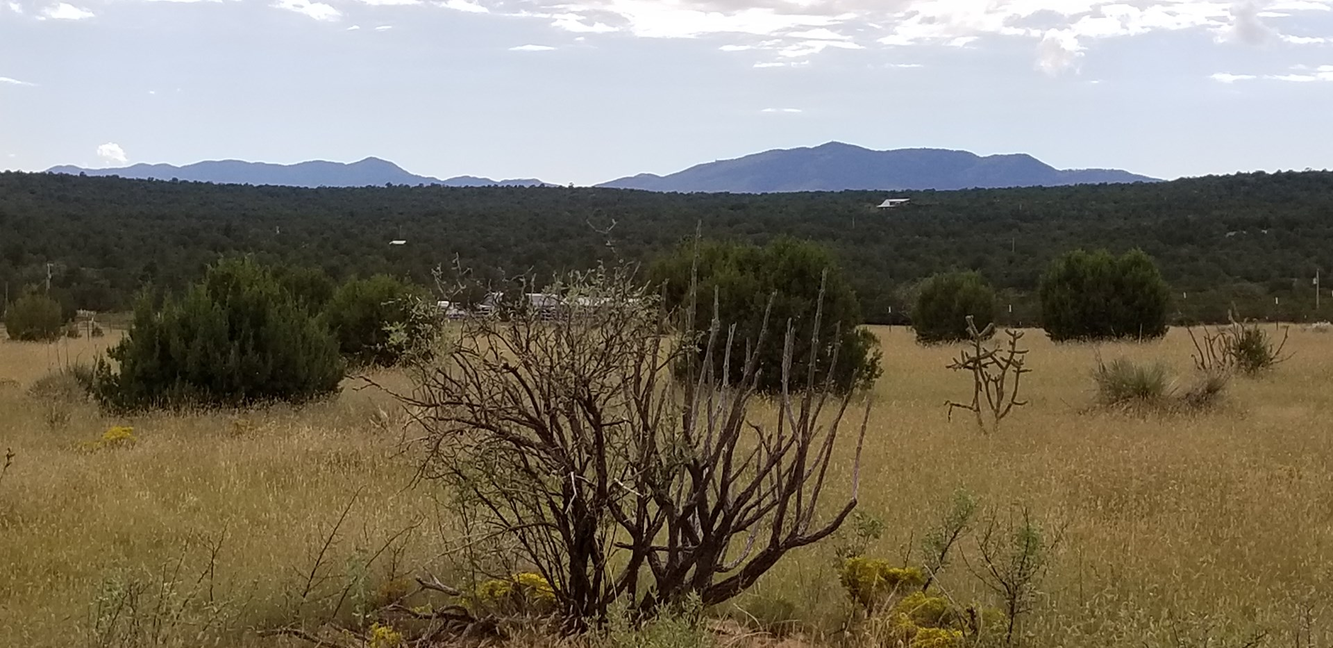 For Sale 36 Acre Home Site in Manzano Foothills Tajique NM