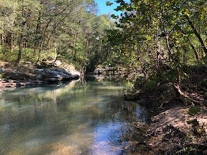 DANIEL BOONE NATIONAL FORREST TRACT