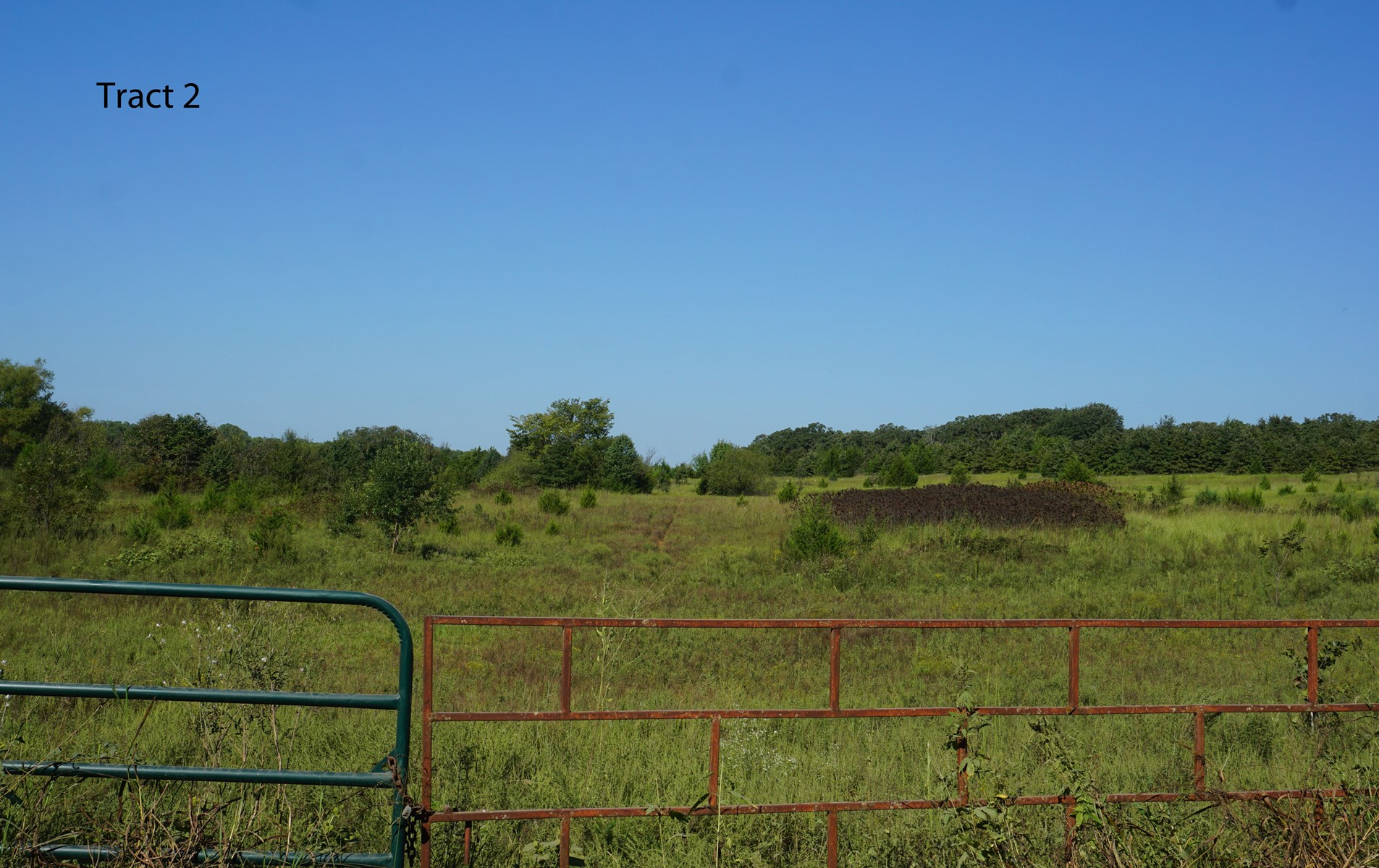 Recreational / Hunting property No Reserve Auction, Meeker