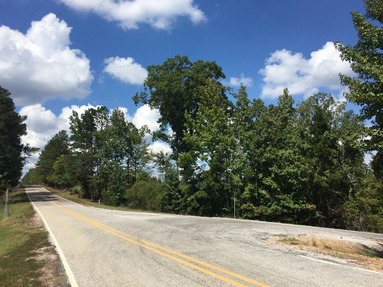 45.25 Acres for Sale in Calhoun County, MS