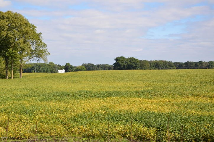 114 acre farm for sale located in Branch County