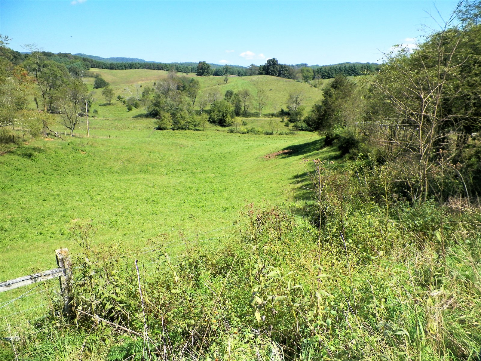 20 + ACRES OF BEAUTIFUL LAND IN THE HEART OF WYTHE CO.