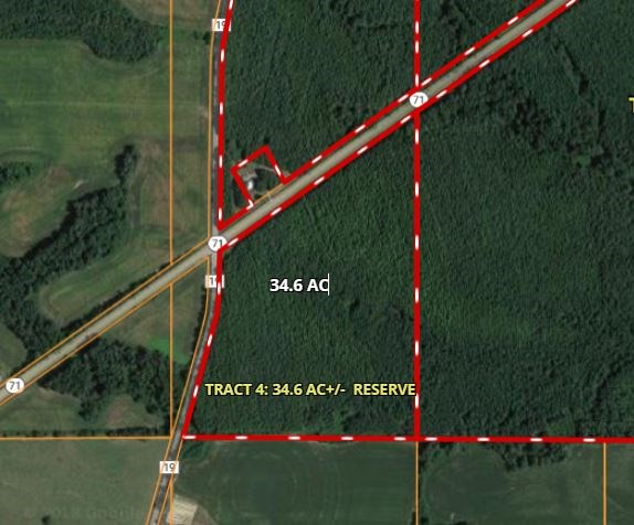 Timberland Auction Tract   4  34  6 Acres