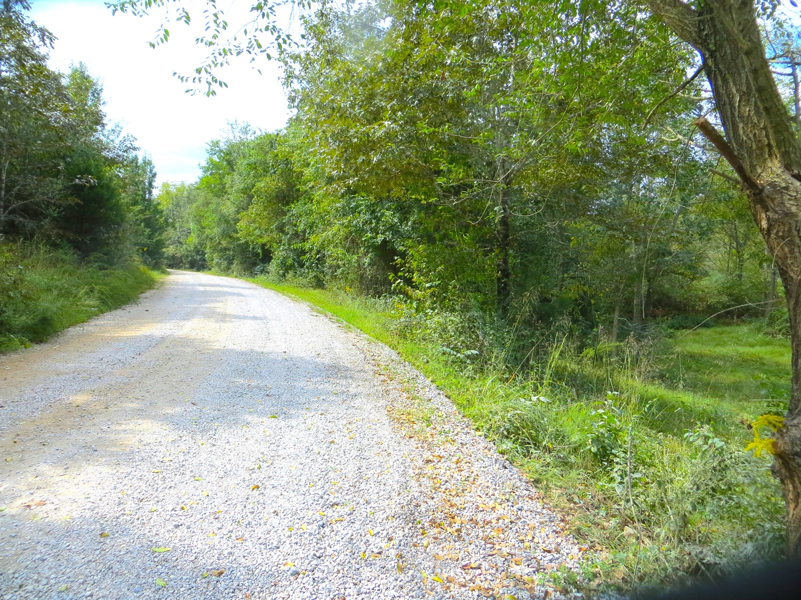 Homesite with Acreage for Sale
