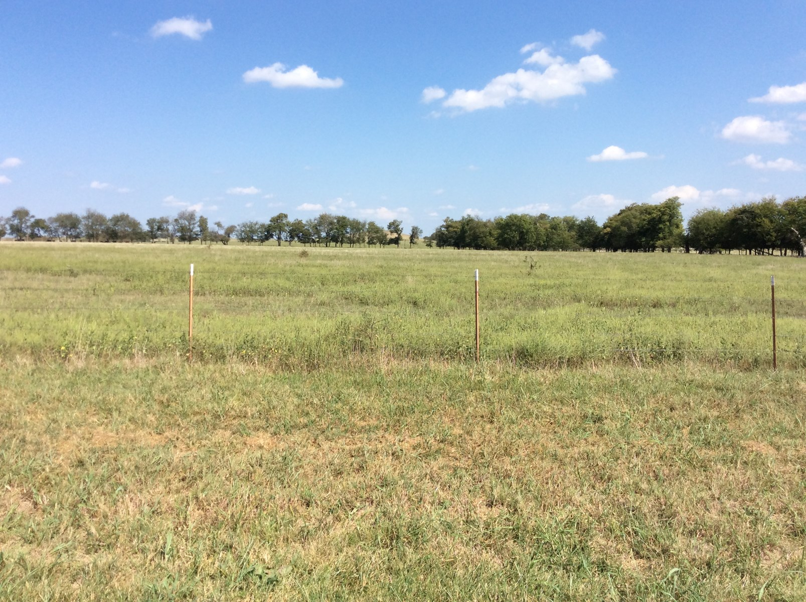 128 ACRES FOR HUNTING, AG LAND OR DEVELOPING
