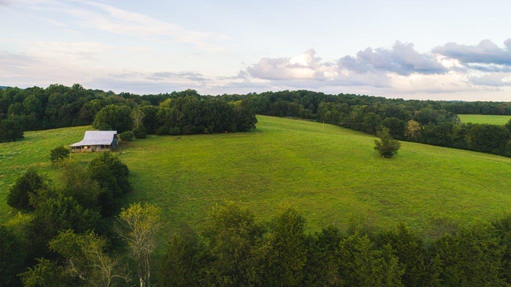 Large Acreage Farm for Sale at Auction in Appomattox VA