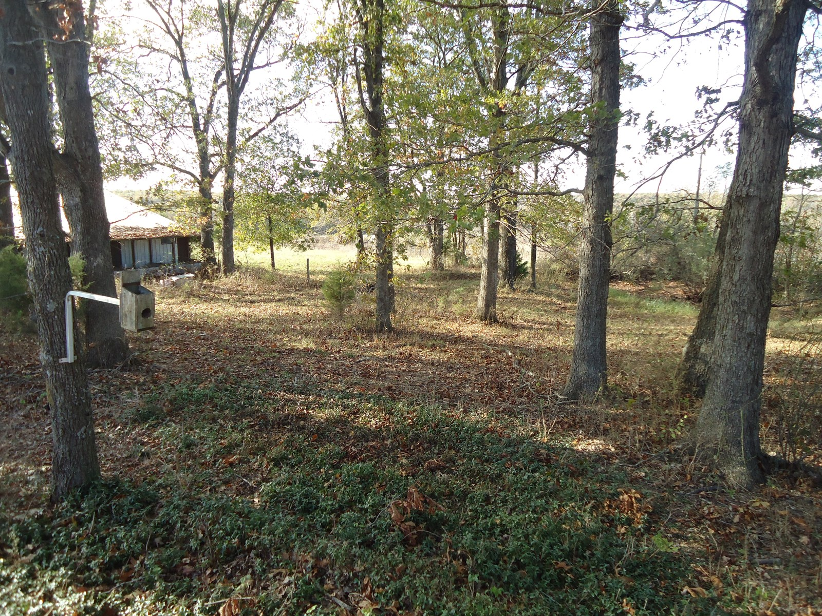 Country Home for Sale in Southern Missouri