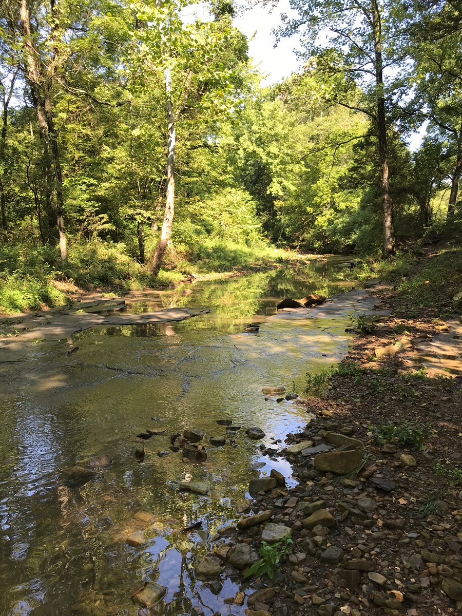 Farm with Creek for sale in the Ozark Mountains