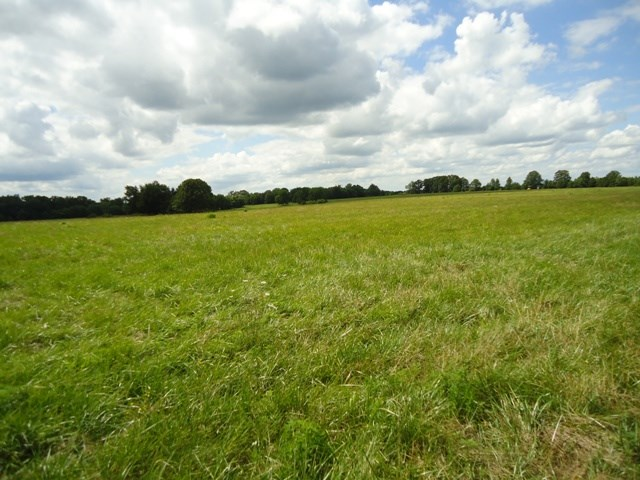 Southern Missouri Farm with Pasture and Hay Land for Sale