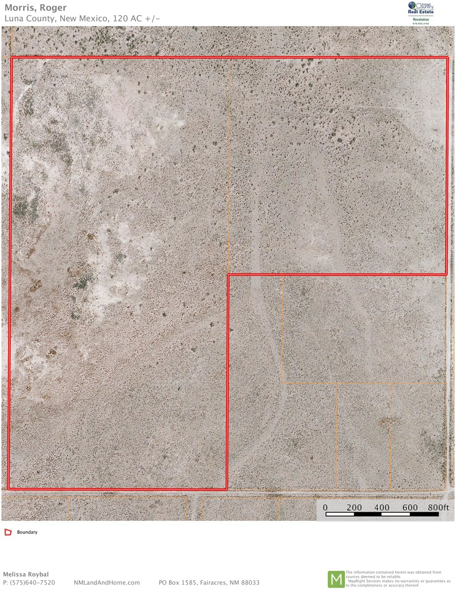Affordable Desert Land Near Deming, NM