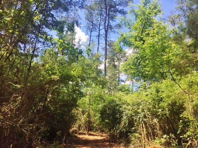 20 Acres Rural Land for Sale in SW MS, McComb, Pike Co, MS