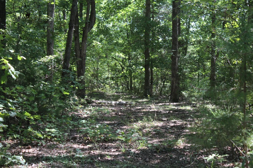 5.49 Acres with No Restrictions