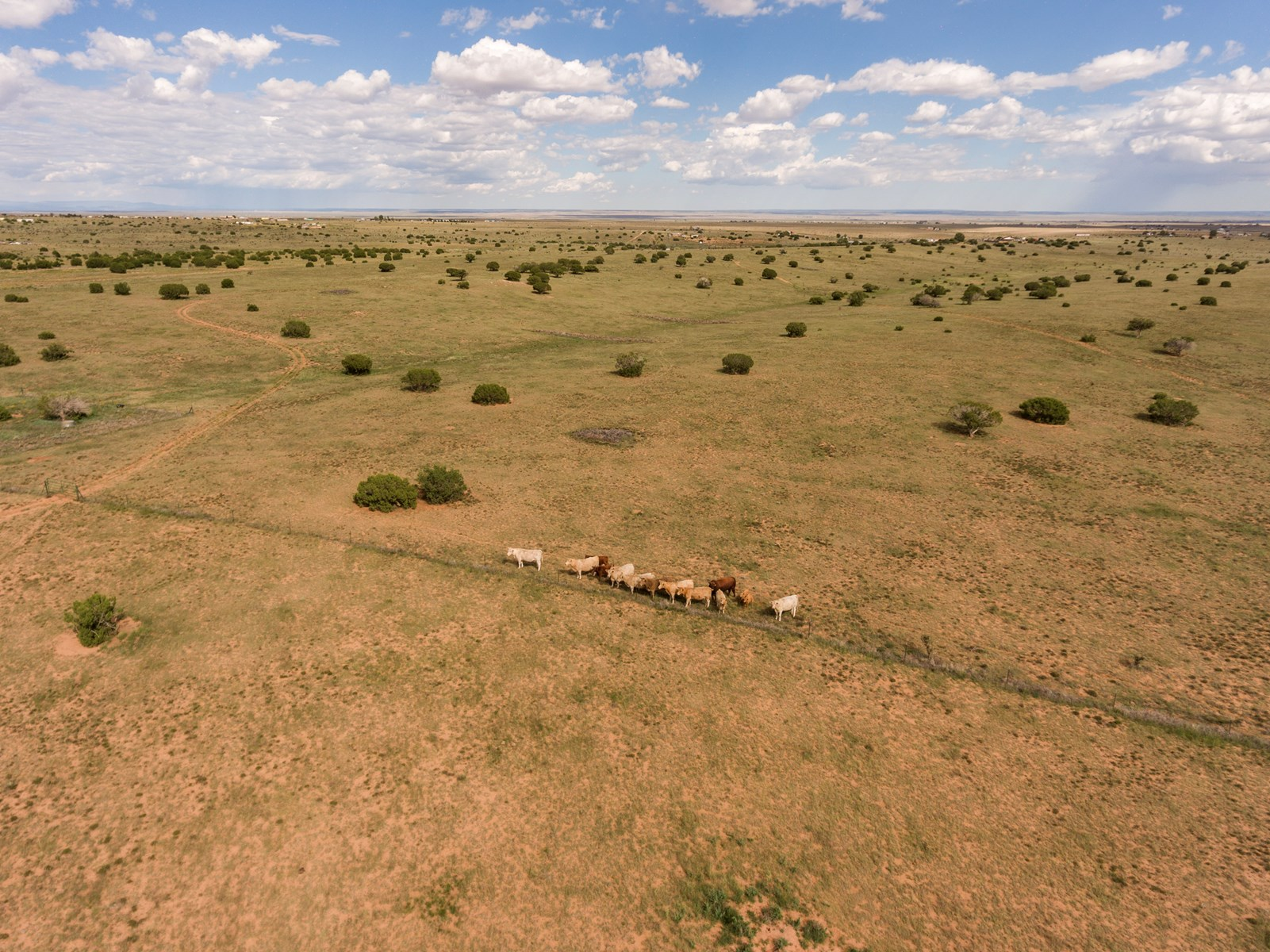 Edgewood Santa Fe County NM 78 Ac For Sale Paved Frontage