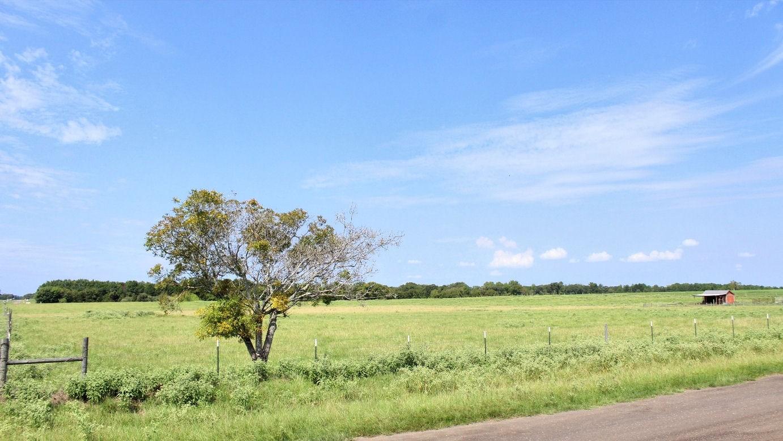RURAL ACREAGE FOR SALE MONTALBA TX   EAST TX HORSE PROPERTY