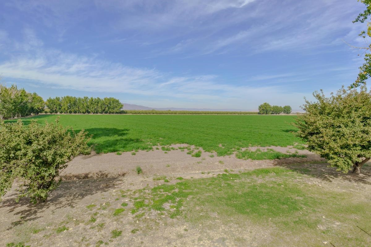 Yolo County Farm Land For Sale