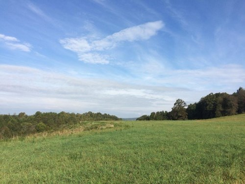 130 ACRES OF LAND LOCATED IN CARROLL COUNTY, VIRGINIA