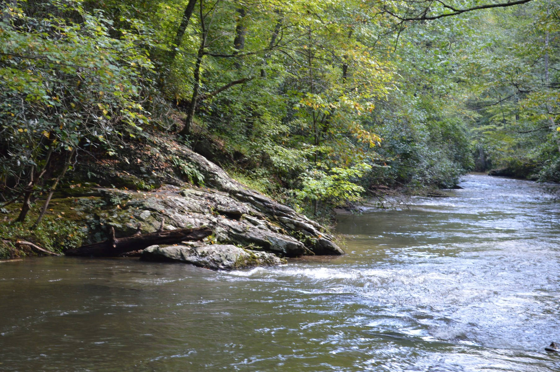 9.1 Acre Tract on Little River! Alleghany County NC