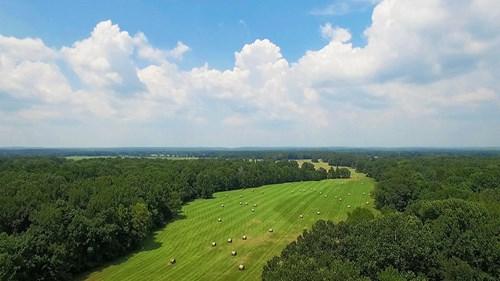 Saline Bluff Ranch - 1,661 acres - Sevier County, Arkansas