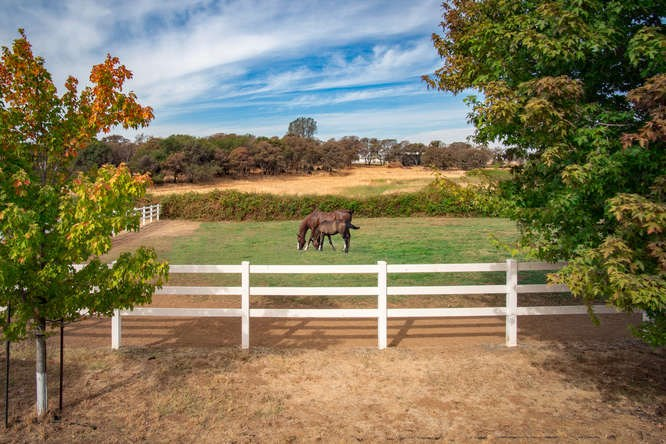 Pristine Training Horse Ranch in Grass Valley, California