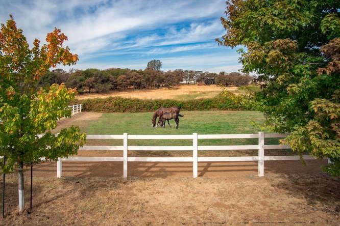 Pristine Training Horse Ranch in Grass Valley, California