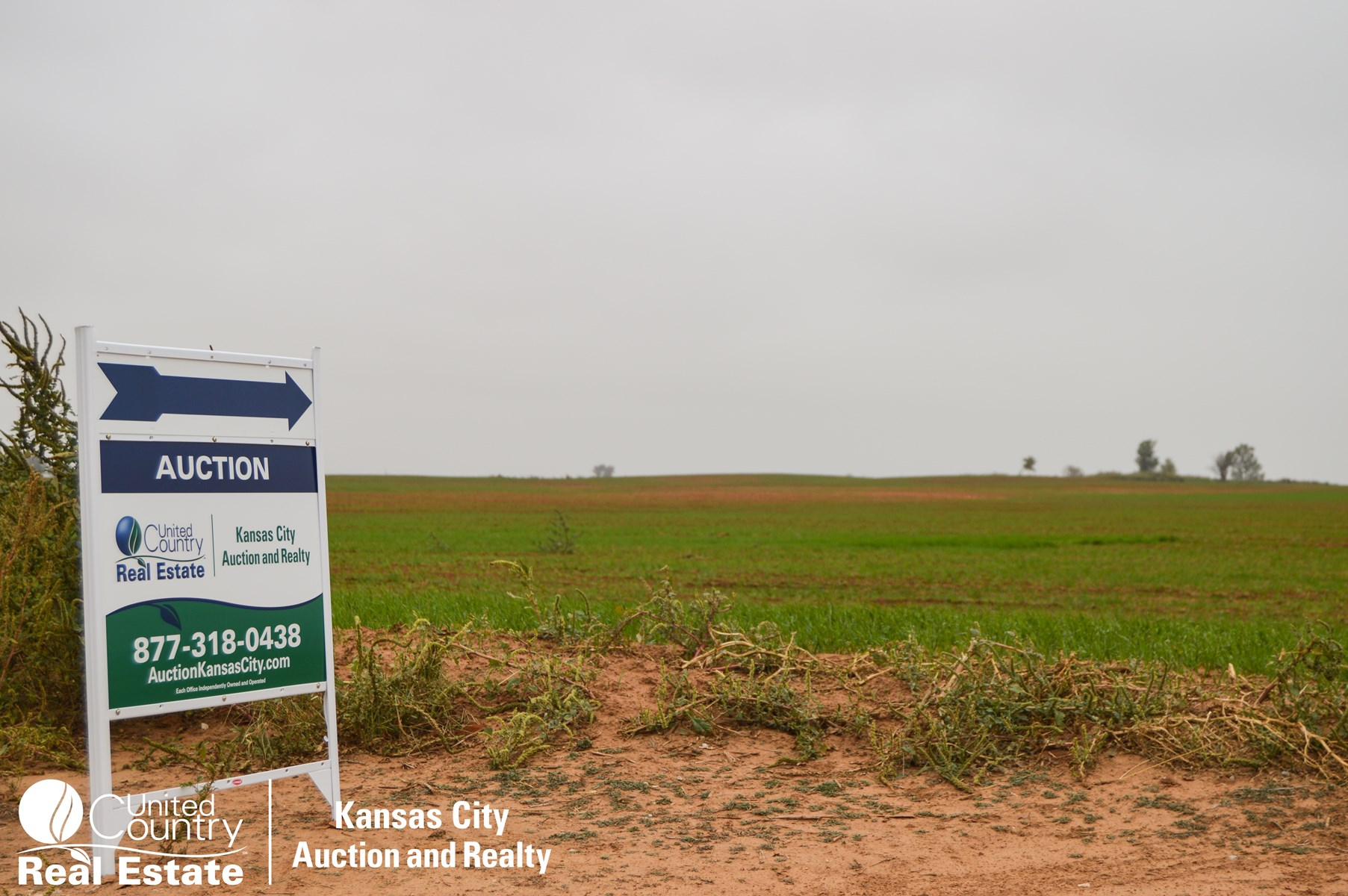 Cropland and Mineral Auction in Anthony  Kansas