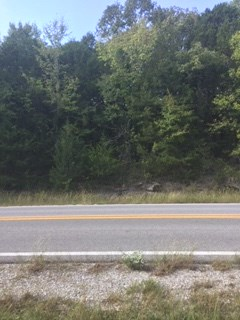 UNRESTRICTED LOT FOR SALE BORDERING THE NATIONAL FOREST